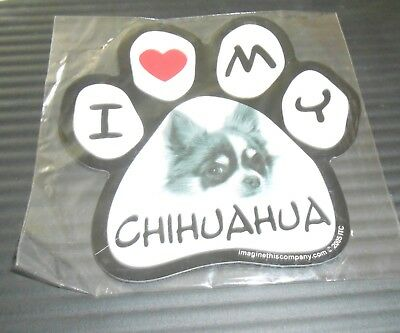 Imagine This 5-1/2-Inch by 5-1/2-Inch Car Magnet Picture Paw, CHIHUAHUA