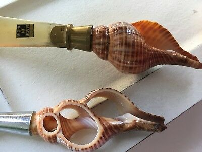 By The Sea Beach Chic Seashell Desk Set MAGNIFYING GLASS & LETTER OPENER