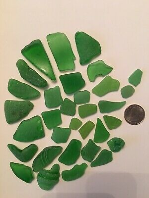 Lot Of Green Genuine Beach Sea Glass Surf Tumbled Ocean/Sound Frosted  WA Coast