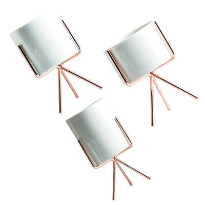 3pcs Mini Cactus Planter Pot Tabletop Metal Stand Rack for Succulent Plant