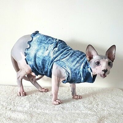 JEANS LOOK, Sphynx clothes,coat top for a Sphynx cat - cat clothes, Hotsphynx.