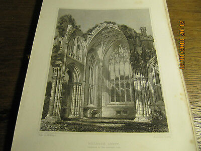 Planche Melrose Abbey Interior of the Eastern end BILLINGS 19e