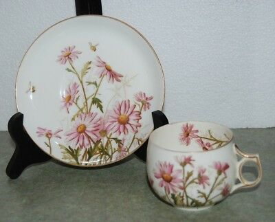 Antique 19th Century Hand Painted Pink Daisies Porcelain Cup & Saucer Set Bee
