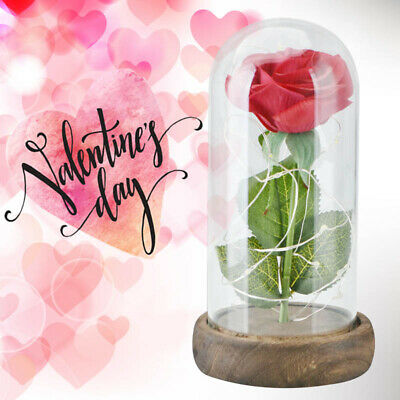 """WR 7"""" Glass Enchanted Rose LED Lighted Beauty And The Beast Girl Gift Wedding"""