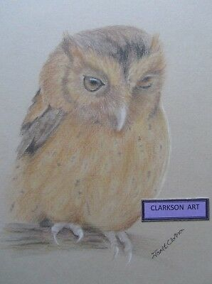 SNOWY OWL Pencil Drawing Artist Signature limited edition quality WISE SILENT