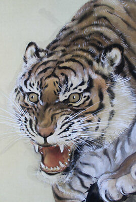 JAPANESE PAINTING HANGING SCROLL Japan Cat Tiger ANTIQUE PAINT ART PICTURE 022k