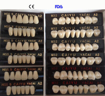 POLYMER RESIN DENTURE TEETH 2 layers 12 cards 3 Sets 84 teeth size 6 color a3