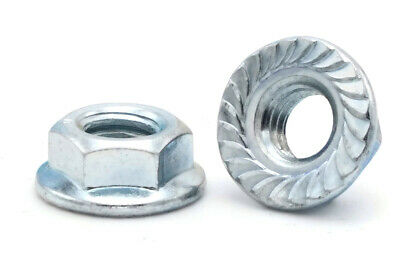 Flange Nuts Serrated Lock Nuts Zinc Plated Steel Flange Nut All Sizes & QTYs