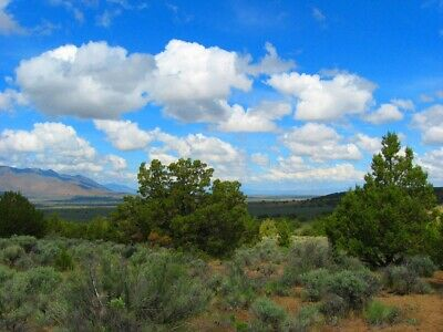 "Rare 10 Acre Elko Nevada Ranch ""Wildhorse Canyon"" W Trees! Cash Sale No Reserve!"
