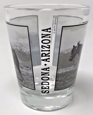Hilarious Sedona Arizona Designated Driver Shot Glass - LN!
