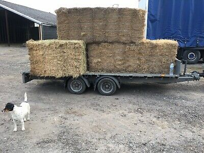 IFOR WILLIAMS TRAILER YEAR 2017 ( 14 ft )