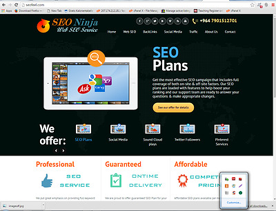 Outstanding SEO Website Free Installation+Hosting