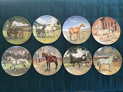 Spode The Noble Horse Plate Collection By Susie Whitcombe With Display Rack