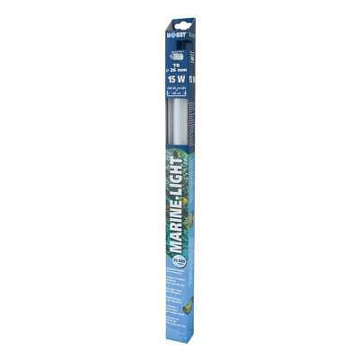 Hobby Marine-Light, T8 Tube Fluorescent - Eau de Mer Éclairage pour Aquarium