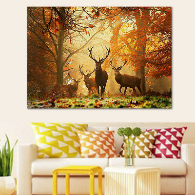 Autumn Forest Stag Herd Sunset Painting Canvas Wall Print Picture Unframed Decor