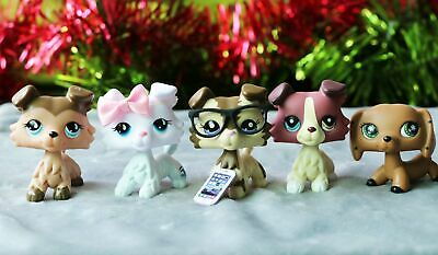 Littlest Pet Shop LPS Collie 893 1262 2210 Dachshund Dog Authentic Rare 5PCS