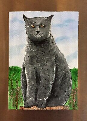 ACEO original silver tabby British shorthair Cat oil painting