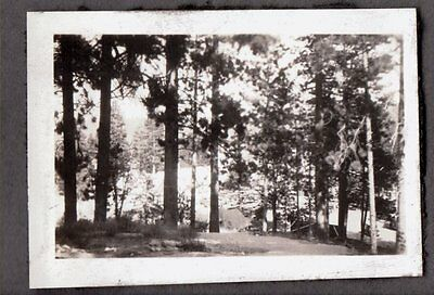 1926 Lake Arrowhead Los Angeles California City Hall Camping Trip Old Cars Photo