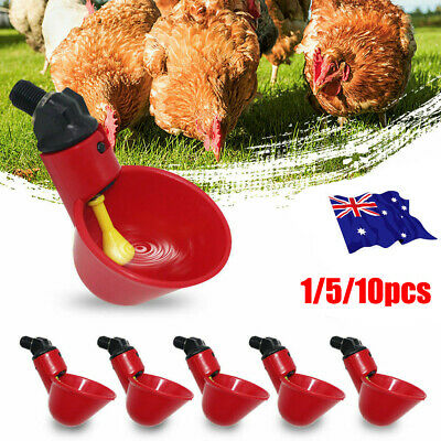 1-10PC Automatic Cups Water Feeder Drinker Chicken Waterer Poultry Chook Bird LG