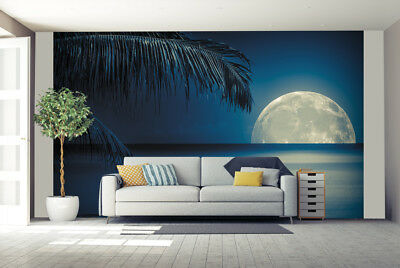 Beautiful full moon Photo Wallpaper Mural Giant Wall Covering Decor