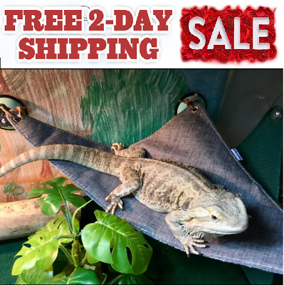 ADJUSTABLE BEARDED DRAGON Reptile Lizard Gecko Critters