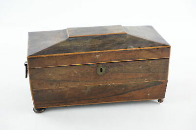 Antique 19th Century ROSEWOOD Sarcophagus Shaped TEA CADDY