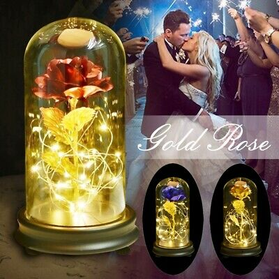 WR Gold Plated Rose Glass Lamp LED Lighted Golden Flower Valentine Gifts For Her