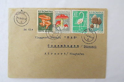 Cover Romania Rumänien Mushrooms Flamingo Sibiu 1960