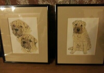 Pair of Framed Shar-Pei Dogs Art Prints Matted