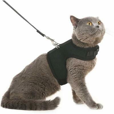 Escape Proof Cat Harness & Leash Adjustable Soft Mesh Holster Style - Size M