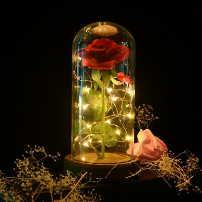 WR Beauty And The Beast Rose Flower In Glass Dome LED Light Valentine Gifts