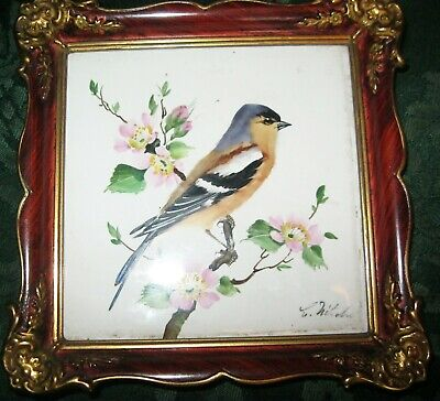 Old German Rosenthal hand painted tile plaque of Bullfinch signed . 14x 14 cms
