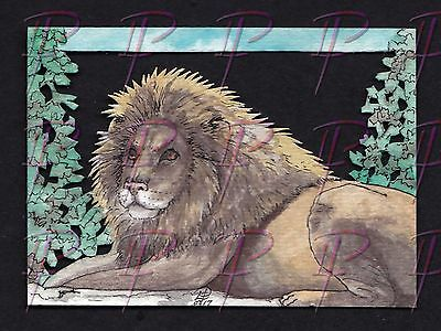 """Male Lion""ACEO Original Watercolor and Ink Handcut cat king feline jungle big"