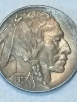 1937D BUFFALO NICKEL 5 Cents of United States of America USA Antique Coin .