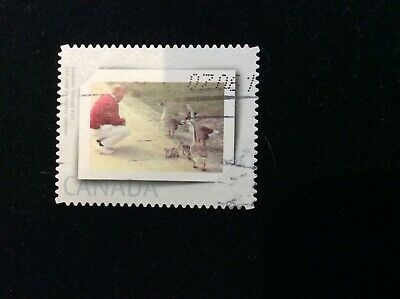 Canada Picture Postage Stamp / Personalized Stamps - Used - Man With Geese