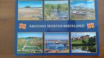Around Northumberland Unused Postcard