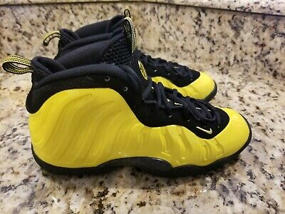 4642cb4043a Nike Little Posite One Gs Wu Tang Clan Foamposite 644791-701 Youth Size 5.5Y