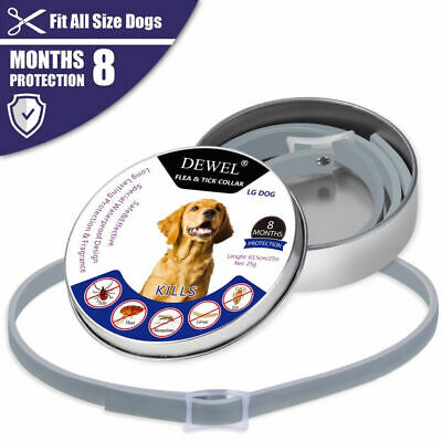 US DEWEL 63CM Collar Dogs Flea and Tick Collar for Large Dogs 8 Month Protection