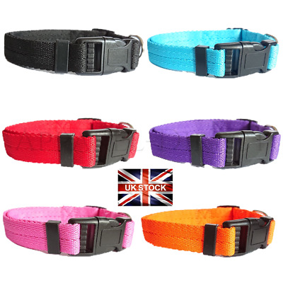Dog Collar Nylon Adjustable Collars 4 sizes 6 colours UK Pet Accessories