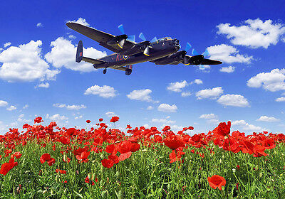 canvas print various sizes free delivery Spitfire Mk1a N3200 QV  poppy field