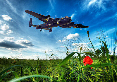 Spitfire mk1a over fields   canvas print  various sizes free delivery