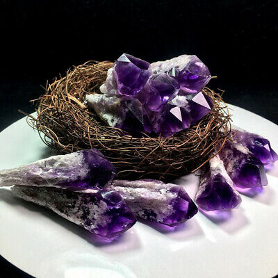 Natural Brazil Skeletal Amethyst Scepter Quartz Crystal Point Healing Specimen