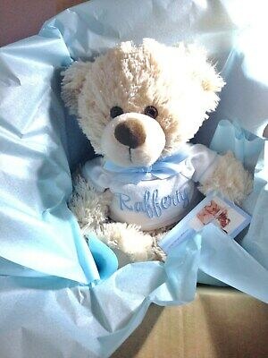 Personalised Teddy Bear 26cm Baby Shower Gift Birthday  Pink or Blue Any Name