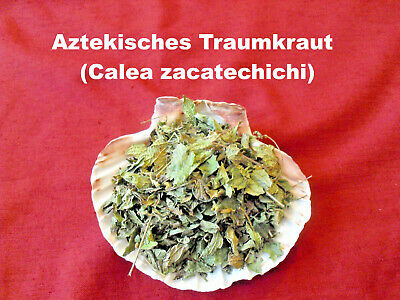 50g Aztekisches Traumkraut Calea zacatechichi Traumgras Dream herb