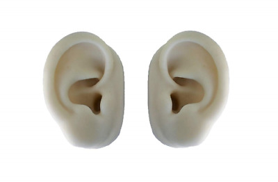 Silicone ear model (pair) for acupuncture - Leonidov