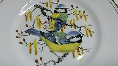 Elizabethan Staffordshire Plate Hand decorated BLUE TITS on bone china