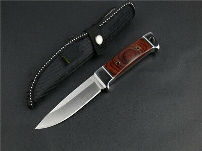 Fixed Blade Hunting Knife, camping, Tactical or survival w/ Nylon Sheath