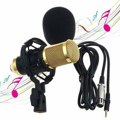 Professional Sound Studio Dynamic Mic +Shock Mount BM900 Condenser Microphone