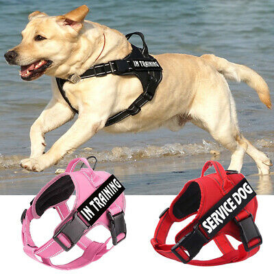 Service Dog No-Pull Harness Reflective Pet Puppy Outdoor Walking Vest & Patches