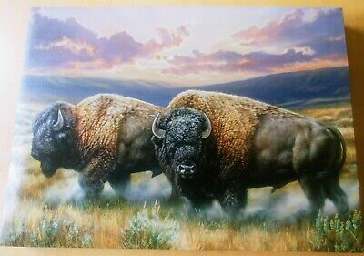 Dusty Plains - Bison Wrapped Canvas by Rosemary Millette